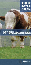 Optibull Flyer